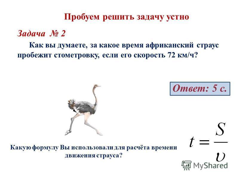 Пробуем решить задачу устно Задача 2 Как вы думаете, за какое время африканский страус пробежит стометровку, если его скорость 72 км/ч? Ответ: 5 с. Какую формулу Вы использовали для расчёта времени движения страуса?