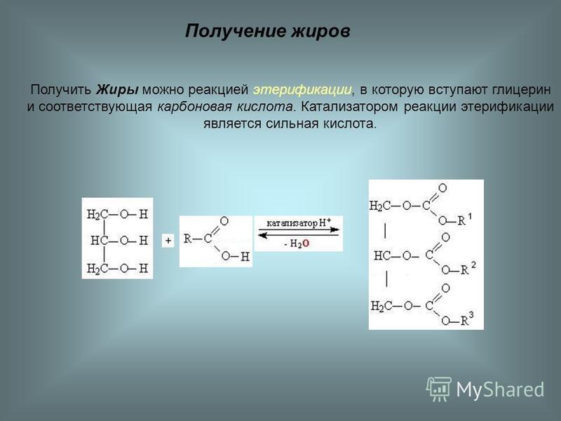 Получение жиров Получить Жиры можно реакцией этерификации, в которую вступают глицерин и соответствующая карбонновая кислота. Катализатором реакции этерификации является сильная кислота.