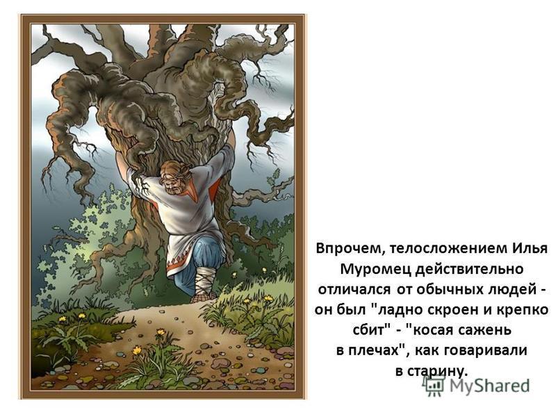 Впрочем, телосложением Илья Муромец действительно отличался от обычных людей - он был ладно скроен и крепко сбит - косая сажень в плечах, как говаривали в старину.