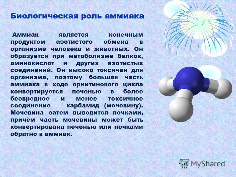 Аммиак является конечным продуктом азотистого обмена в организме человека и животных. Он образуется при метаболизме белков, аминокислот и других азотистых соединений. Он высоко токсичен для организма, поэтому большая часть аммиака в ходе орнитинового