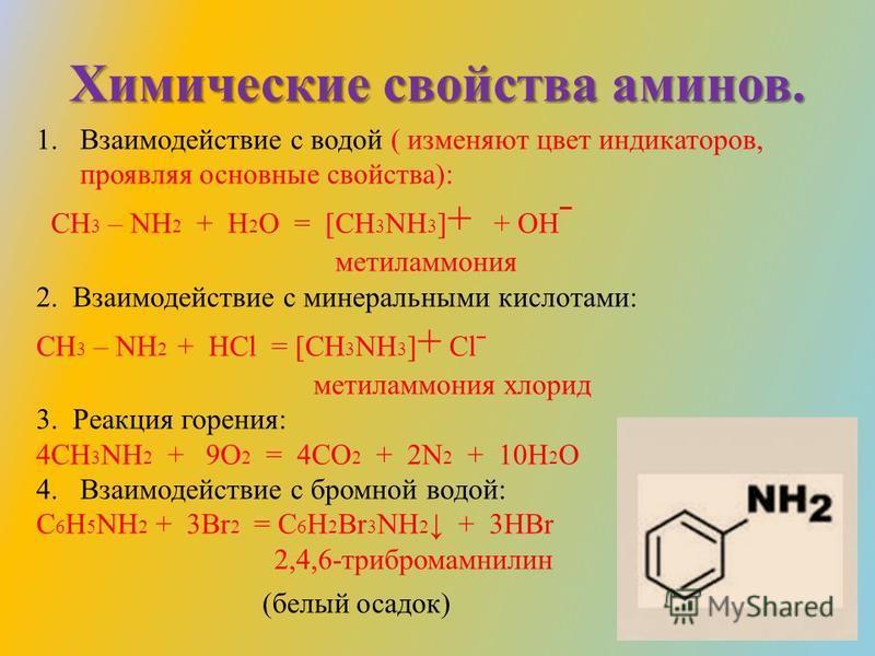Химические свойства аминов. 1. Взаимодействие с водой ( изменяют цвет индикаторов, проявляя основные свойства): CH 3 – NH 2 + H 2 O = [CH 3 NH 3 ] + + OH ˉ метиламмония 2. Взаимодействие с минеральными кислотами: CH 3 – NH 2 + HCl = [CH 3 NH 3 ] + Cl