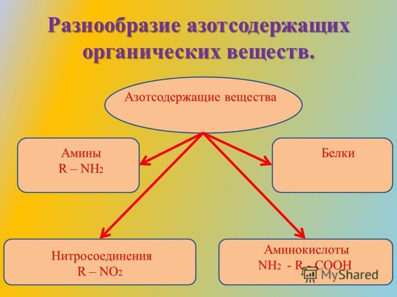 Разнообразие азотсодержащих органических веществ. Азотсодержащие вещества Амины R – NH 2 Нитросоединения R – NO 2 Аминокислоты NH 2 - R - COOH Белки