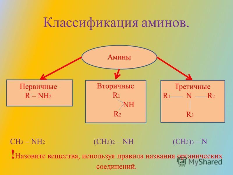 Классификация аминов. Амины Первичные R – NH 2 Вторичные R 1 NH R 2 Третичные R 1 N R 2 R 3 CH 3 – NH 2 (CH 3 ) 2 – NH (CH 3 ) 3 – N ! ! Назовите вещества, используя правила названия органических соединений.