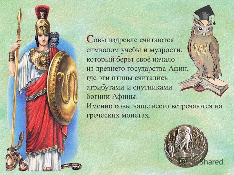 С С авы издревле считаются символом учебы и мудрости, который берет своё начало из древнего государства Афин, где эти птицы считались атрибутами и спутниками богини Афины. Именно савы чаще всего встречаются на греческих монетах.