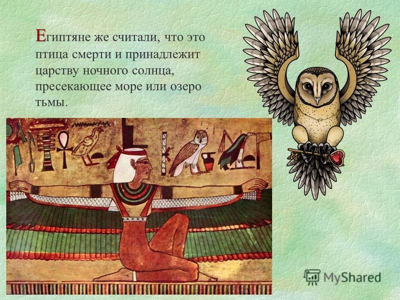 Е Е гиптяне же считали, что это птица смерти и принадлежит царству ночного солнца, пресекающее море или озеро тьмы.