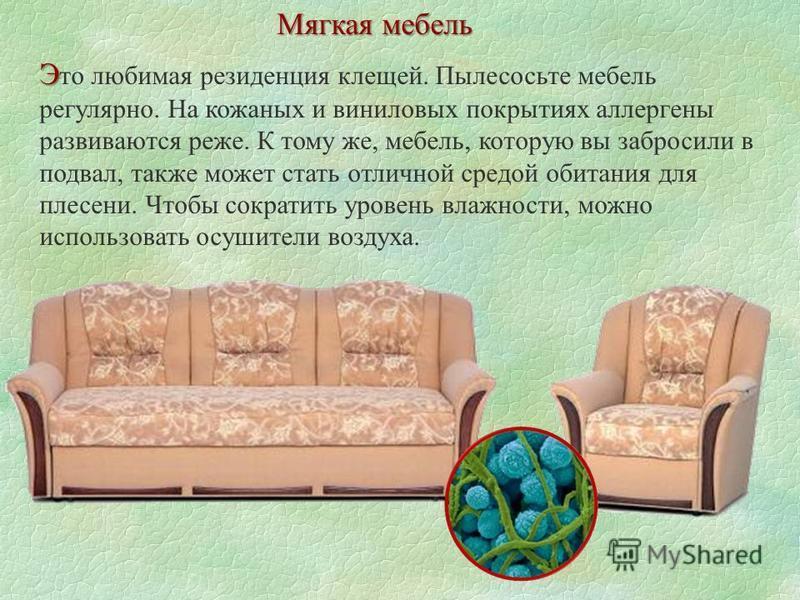 Мягкая мебель Э Э то любимая резиденция клещей. Пылесосьте мебель регулярно. На кожаных и виниловых покрытиях аллергены развиваются реже. К тому же, мебель, которую вы забросили в подвал, также может стать отличной средой обитания для плесени. Чтобы