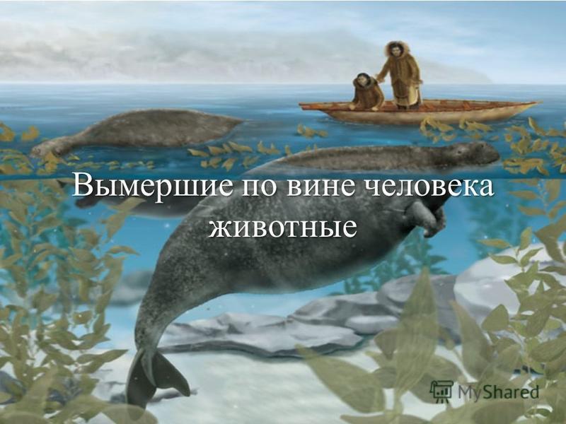 Вымершие по вине человека животные