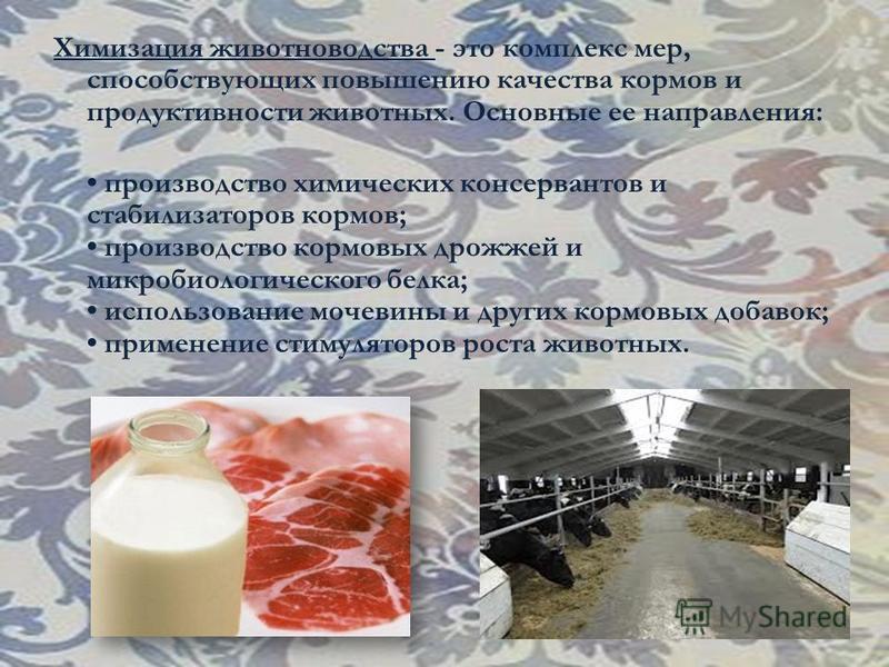 Химизация животноводства - это комплекс мер, способствующих повышению качества кормов и продуктивности животных. Основные ее направления: производство химических консервантов и стабилизаторов кормов; производство кормовых дрожжей и микробиологическог