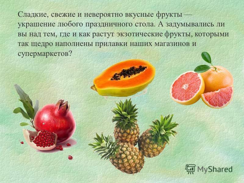 Сладкие, свежие и невероятно вкусные фрукты украшение любого праздничного стола. А задумывались ли вы над тем, где и как растут экзотические фрукты, которыми так щедро наполнены прилавки наших магазинов и супермаркетов?