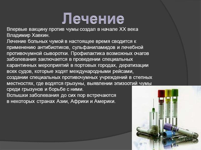 Впервые вакцину против чумы создал в начале XX века Владимир Хавкин. Лечение больных чумой в настоящее время сводится к применению антибиотиков, сульфаниламидов и лечебной противочумной сыворотки. Профилактика возможных очагов заболевания заключается