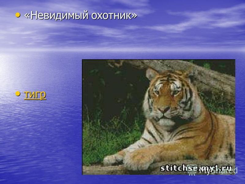 «Невидимый охотник» «Невидимый охотник» тигр тигр тигр