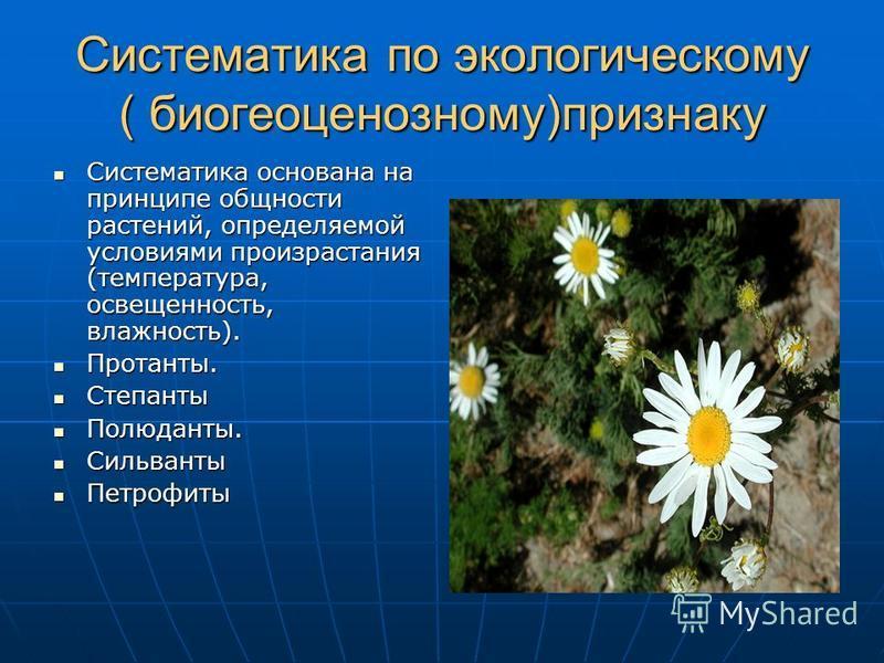 Систематика по экологическому ( биогеоценоз ному)признаку Систематика основана на принципе общности растений, определяемой условиями произрастания (температура, освещенность, влажность). Систематика основана на принципе общности растений, определяемо