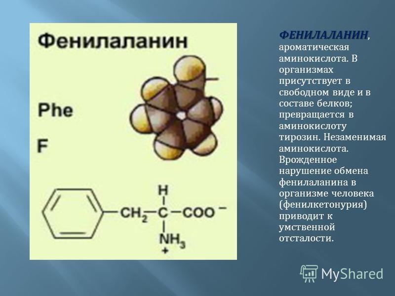 ФЕНИЛАЛАНИН ФЕНИЛАЛАНИН, ароматическая аминокислота. В организмах присутствует в свободном виде и в составе белков ; превращается в аминокислоту тирозин. Незаменимая аминокислота. Врожденное нарушение обмена фенилаланина в организме человека ( фенилк