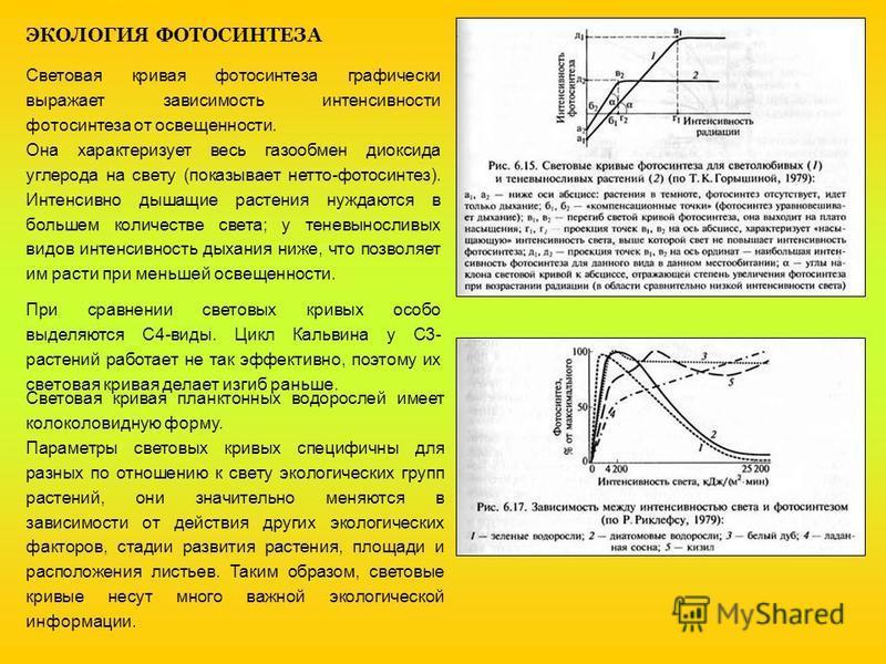 ЭКОЛОГИЯ ФОТОСИНТЕЗА Световая кривая фотосинтеза графически выражает зависимость интенсивности фотосинтеза от освещенности. Она характеризует весь газообмен диоксида углерода на свету (показывает нетто-фотосинтез). Интенсивно дышащие растения нуждают