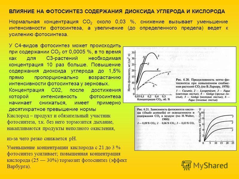 ВЛИЯНИЕ НА ФОТОСИНТЕЗ СОДЕРЖАНИЯ ДИОКСИДА УГЛЕРОДА И КИСЛОРОДА Нормальная концентрация СО 2 около 0,03 %, снижение вызывает уменьшение интенсивности фотосинтеза, а увеличение (до определенного предела) ведет к усилению фотосинтеза. У С4-видов фотосин