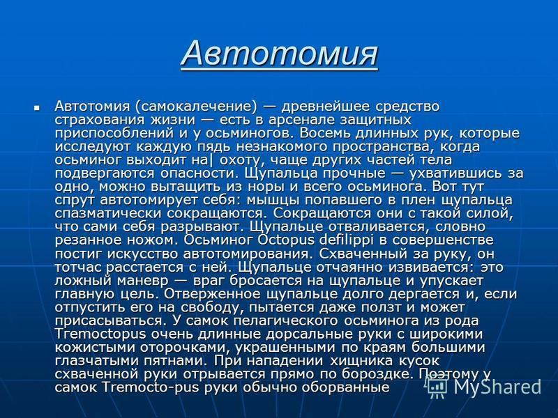 Автотомия Автотомия (самокалечение) древнейшее средство страхования жизни есть в арсенале защитных приспособлений и у осьминогов. Восемь длинных рук, которые исследуют каждую пядь незнакомого пространства, когда осьминог выходит на| охоту, чаще други