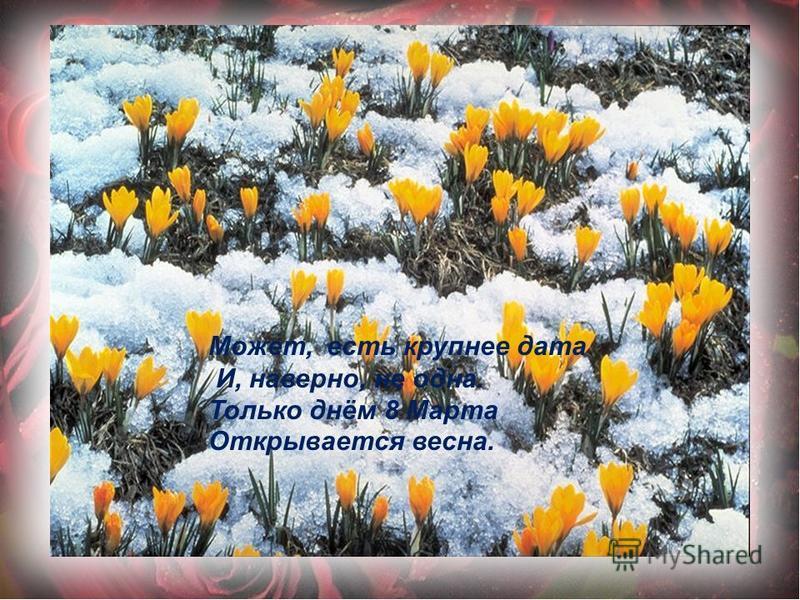 Может, есть крупнее дата И, наверно, не одна. Только днём 8 Марта Открывается весна.