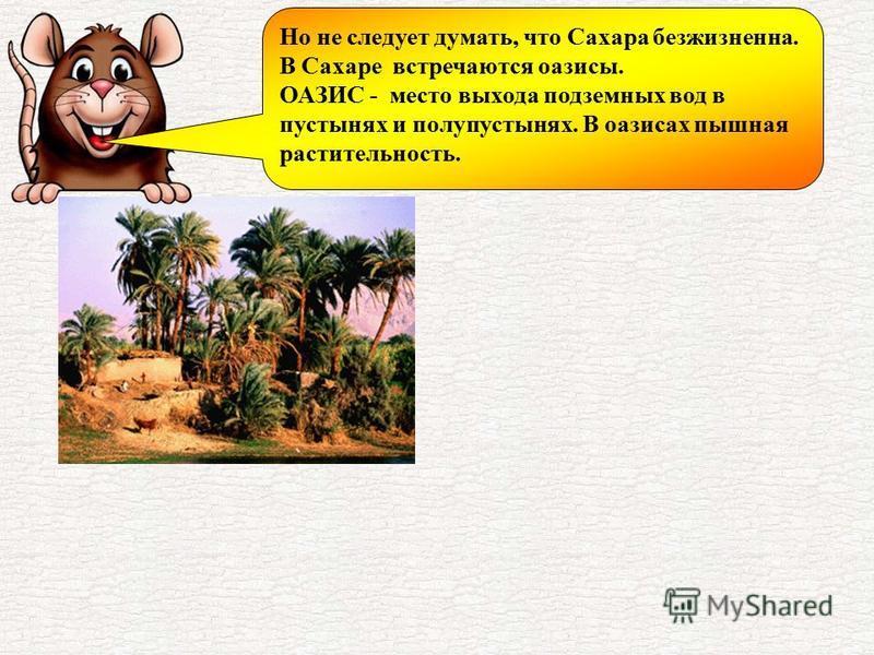 Но не следует думать, что Сахара безжизненна. В Сахаре встречаются оазисы. ОАЗИС - место выхода подземных вод в пустынях и полупустынях. В оазисах пышная растительность.