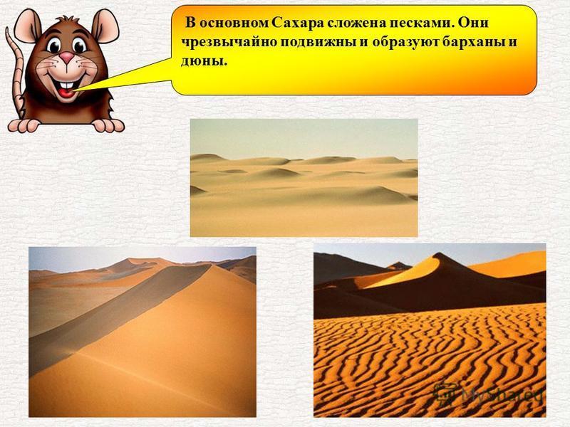 В основном Сахара сложена песками. Они чрезвычайно подвижны и образуют барханы и дюны.