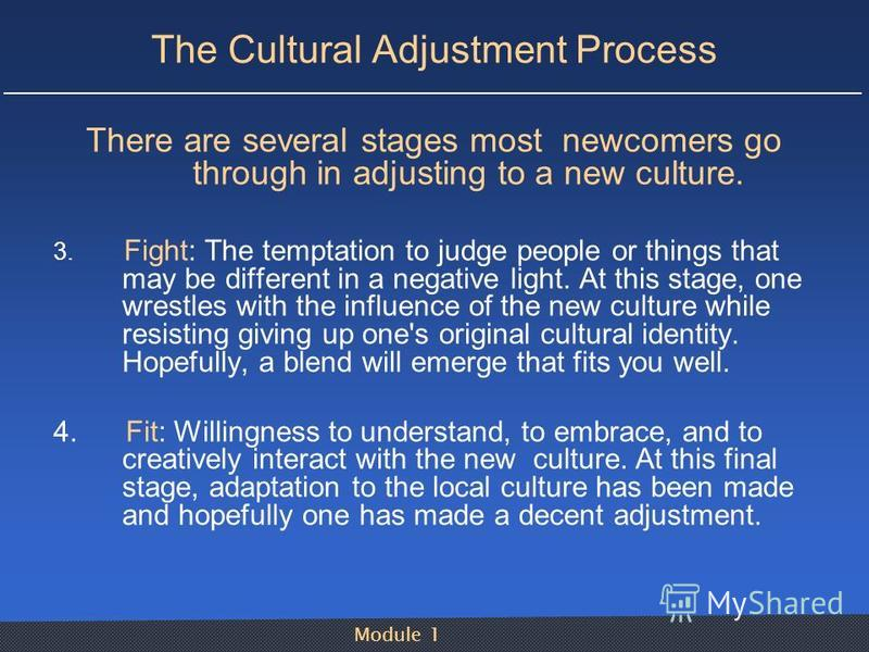 Module 1 The Cultural Adjustment Process There are several stages most newcomers go through in adjusting to a new culture. 3. Fight: The temptation to judge people or things that may be different in a negative light. At this stage, one wrestles with