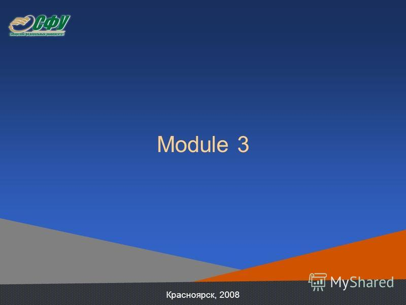 Module 3 Красноярск, 2008