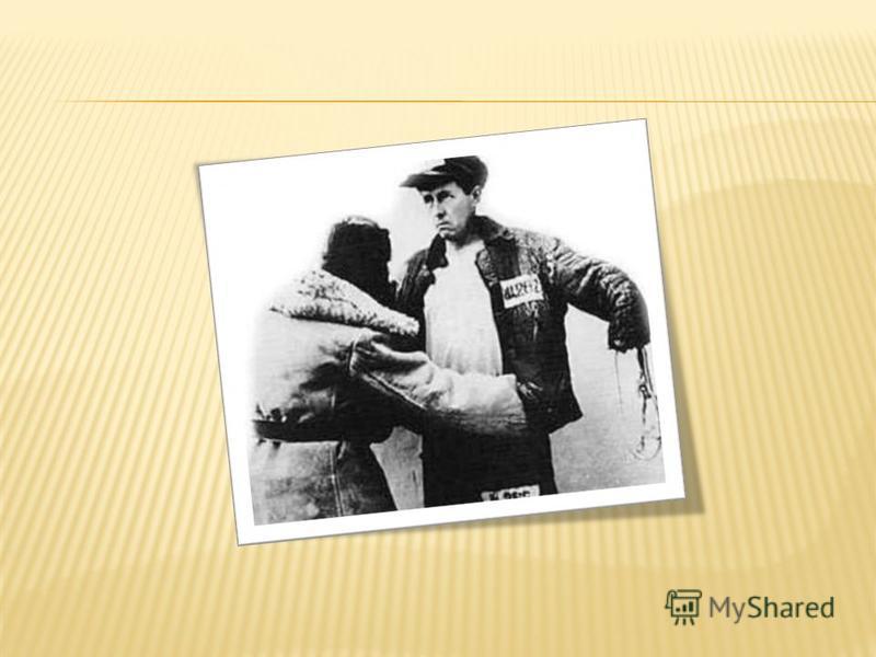 Основания и порядок применения физической силы, специальных средств, газового и огнестрельного оружия регламентируются ФЗ «Об учреждениях и органах, исполняющих уголовные наказания в виде лишения свободы»