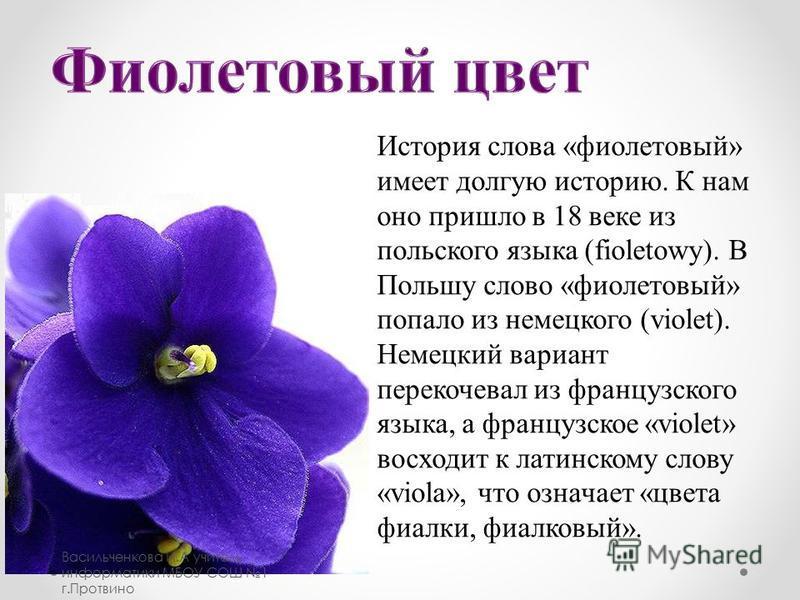История слова «фиолетовый» имеет долгую историю. К нам оно пришло в 18 веке из польского языка (fioletowy). В Польшу слово «фиолетовый» попало из немецкого (violet). Немецкий вариант перекочевал из французского языка, а французское «violet» восходит