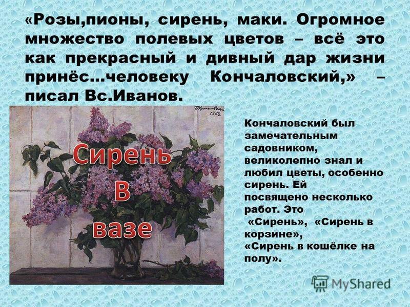 « Розы,пионы, сирень, маки. Огромное множество полевых цветов – всё это как прекрасный и дивный дар жизни принёс…человеку Кончаловский,» – писал Вс.Иванов. Кончаловский был замечательным садовником, великолепно знал и любил цветы, особенно сирень. Ей