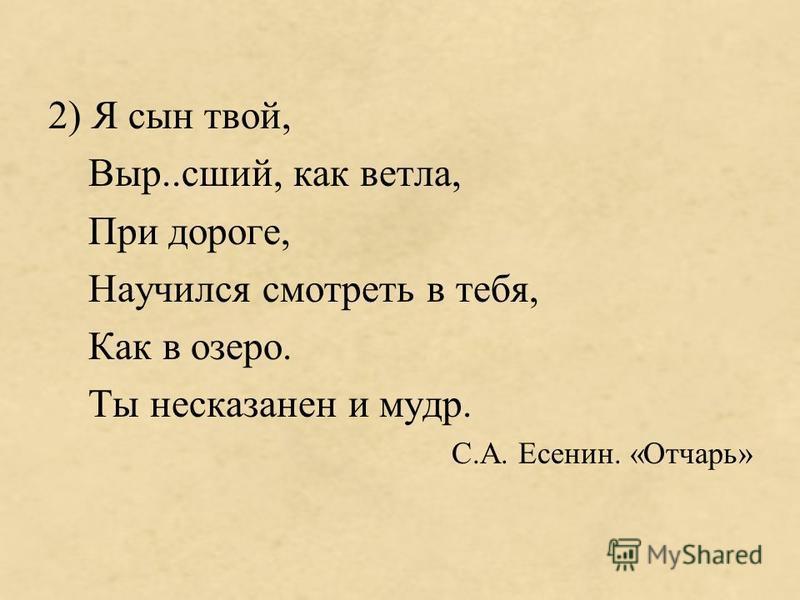 2) Я сын твой, Выр..сшей, как ветла, При дороге, Научился смотреть в тебя, Как в озеро. Ты несказанно и мудр. С.А. Есенин. «Отчарь»