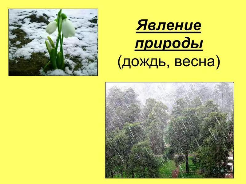 Явление природы (дождь, весна)