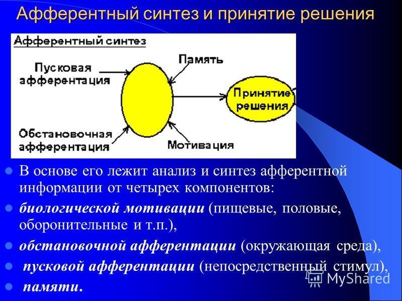 Афферентный синтез и принятие решения В основе его лежит анализ и синтез афферентной информации от четырех компонентов: биологической мотивации (пищевые, половые, оборонительные и т.п.), обстановочной афферентации (окружающая среда), пусковой афферен