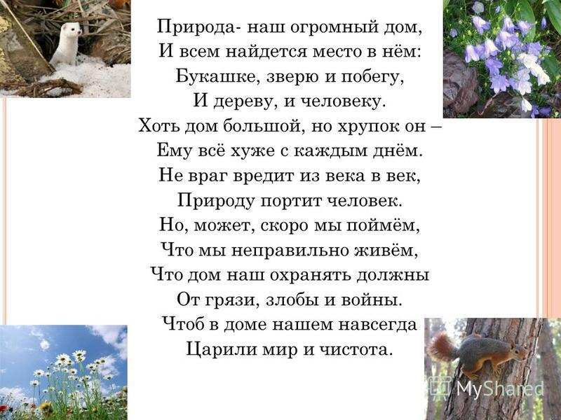 Природа- наш огромный дом, И всем найдется место в нём: Букашке, зверю и побегу, И дереву, и человеку. Хоть дом большой, но хрупок он – Ему всё хуже с каждым днём. Не враг вредит из века в век, Природу портит человек. Но, может, скоро мы поймём, Что