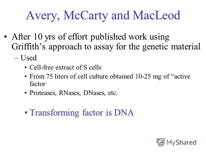 Avery, McCarty and MacLeod After 10 yrs of effort published work using Griffiths approach to assay for the genetic material –Used Cell-free extract of S cells From 75 liters of cell culture obtained 10-25 mg of active factor Proteases, RNases, DNases