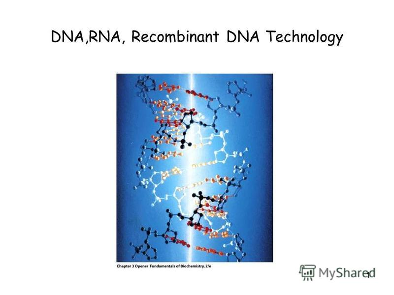 1 DNA,RNA, Recombinant DNA Technology
