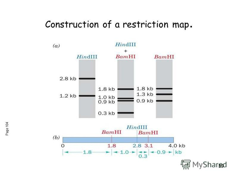 39 Construction of a restriction map. Page 104