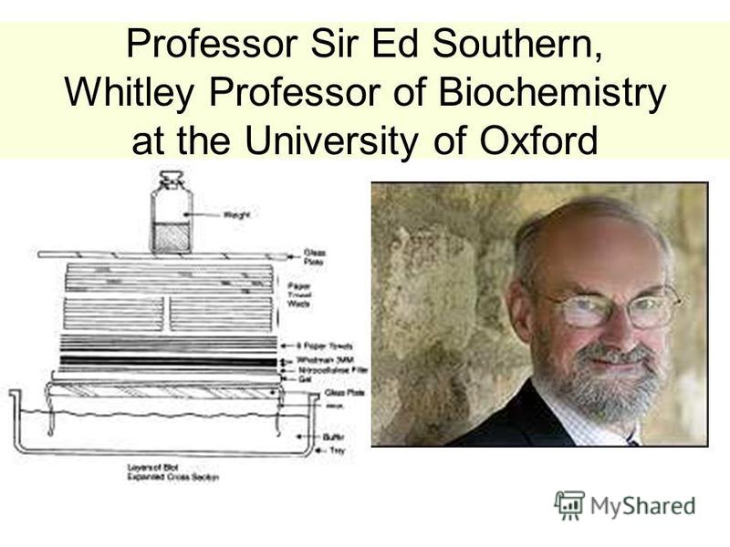 Professor Sir Ed Southern, Whitley Professor of Biochemistry at the University of Oxford.