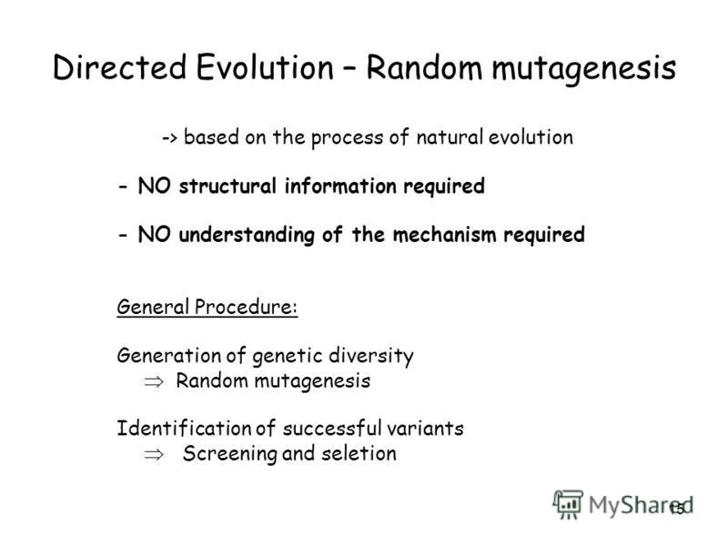 15 Directed Evolution – Random mutagenesis -> based on the process of natural evolution - NO structural information required - NO understanding of the mechanism required General Procedure: Generation of genetic diversity Random mutagenesis Identifica