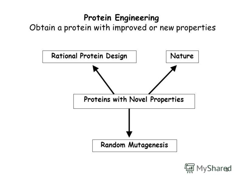 9 Protein Engineering Obtain a protein with improved or new properties Proteins with Novel Properties Rational Protein DesignNature Random Mutagenesis