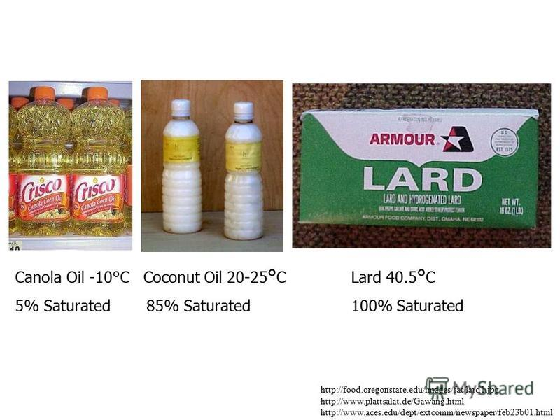 http://food.oregonstate.edu/images/fat/lard1.jpg http://www.plattsalat.de/Gawang.html http://www.aces.edu/dept/extcomm/newspaper/feb23b01.html Canola Oil -10°C Coconut Oil 20-25 ° CLard 40.5 ° C 5% Saturated 85% Saturated100% Saturated