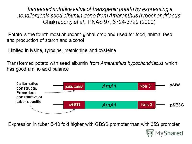 Increased nutritive value of transgenic potato by expressing a nonallergenic seed albumin gene from Amaranthus hypochondriacus Chakraborty et al., PNAS 97, 3724-3729 (2000) Potato is the fourth most abundant global crop and used for food, animal feed