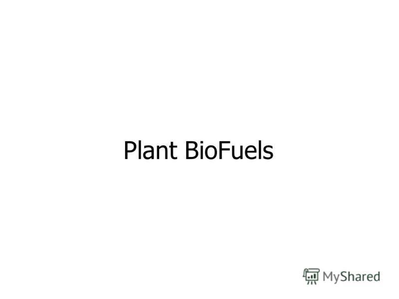 Plant BioFuels