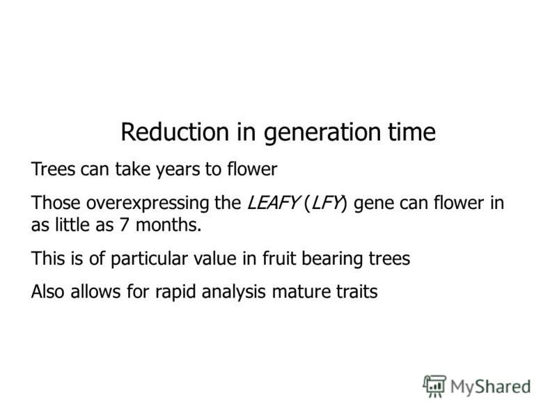 Reduction in generation time Trees can take years to flower Those overexpressing the LEAFY (LFY) gene can flower in as little as 7 months. This is of particular value in fruit bearing trees Also allows for rapid analysis mature traits