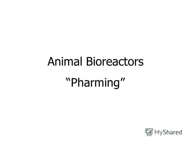 Animal Bioreactors Pharming