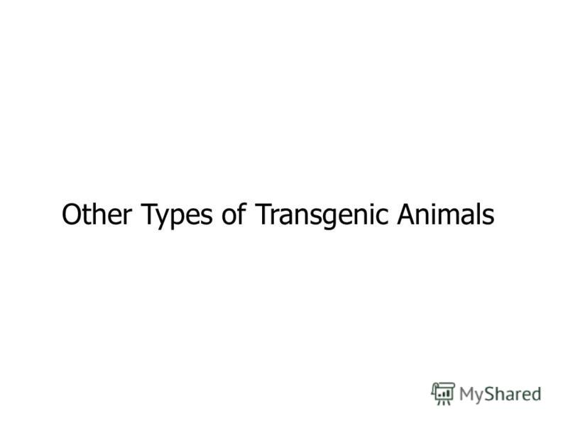 Other Types of Transgenic Animals