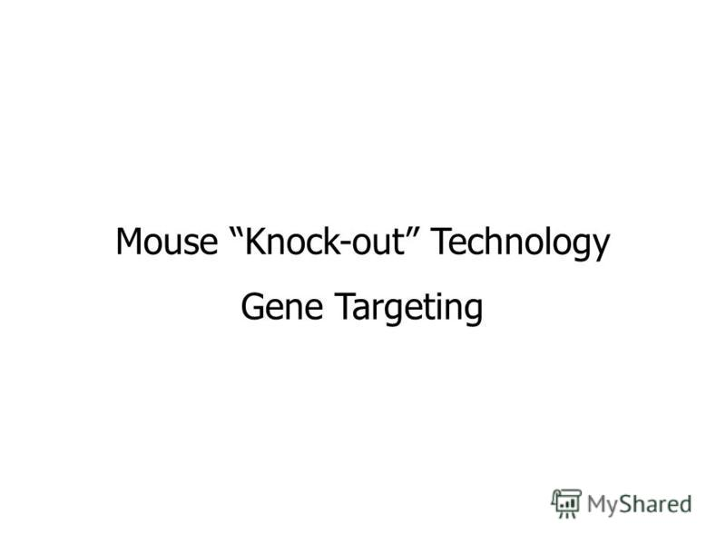 Mouse Knock-out Technology Gene Targeting