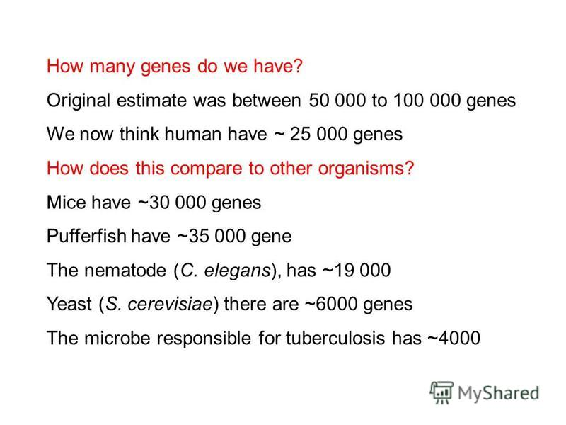How many genes do we have? Original estimate was between 50 000 to 100 000 genes We now think human have ~ 25 000 genes How does this compare to other organisms? Mice have ~30 000 genes Pufferfish have ~35 000 gene The nematode (C. elegans), has ~19