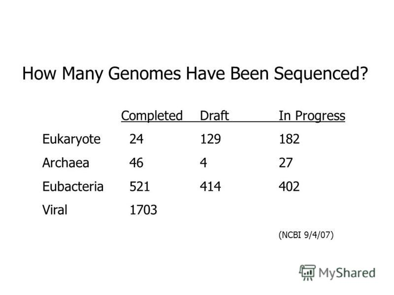 How Many Genomes Have Been Sequenced? CompletedDraftIn Progress Eukaryote 24129182 Archaea 46427 Eubacteria 521414402 Viral 1703 (NCBI 9/4/07)