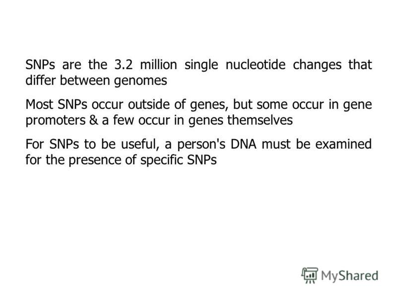 SNPs are the 3.2 million single nucleotide changes that differ between genomes Most SNPs occur outside of genes, but some occur in gene promoters & a few occur in genes themselves For SNPs to be useful, a person's DNA must be examined for the presenc
