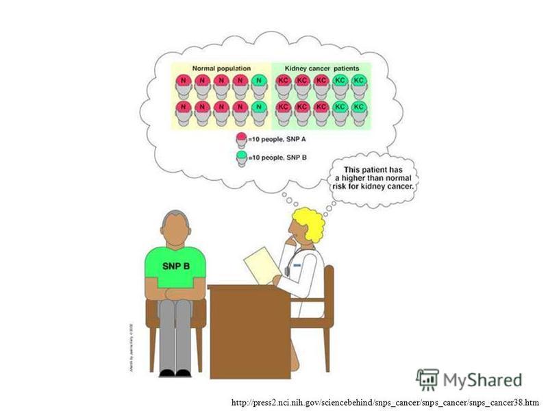 http://press2.nci.nih.gov/sciencebehind/snps_cancer/snps_cancer/snps_cancer38.htm