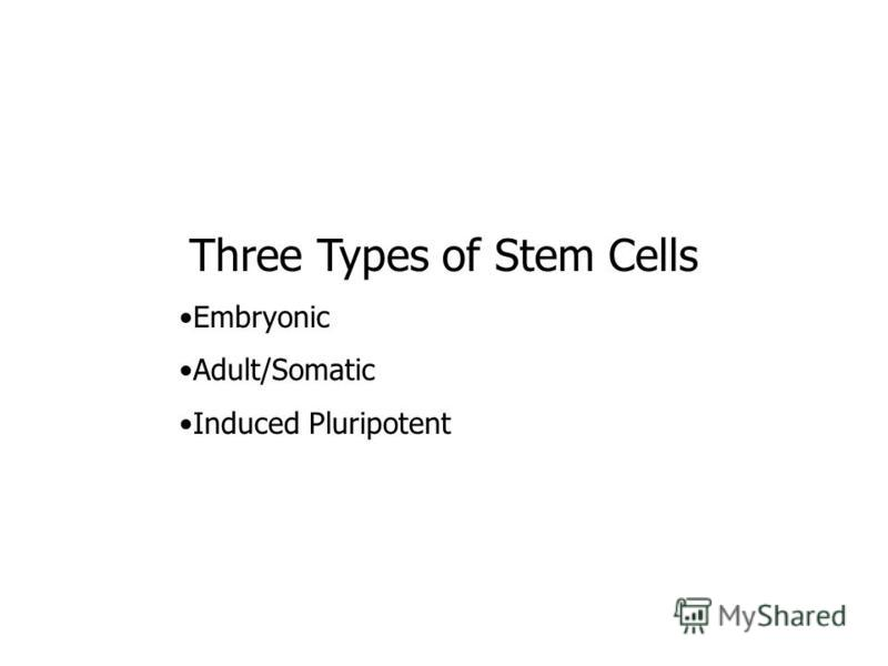 Three Types of Stem Cells Embryonic Adult/Somatic Induced Pluripotent